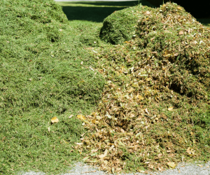 What's the Best Way to Deal with Clippings: Mulching, Bagging or Discharge?